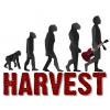 Groupe Harvest